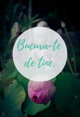 Bijuterii_Teratai_Blog